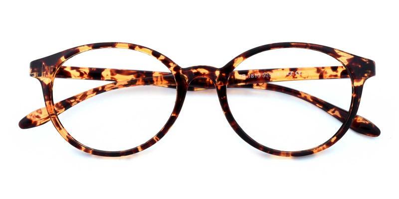 Howar-Tortoise-Eyeglasses