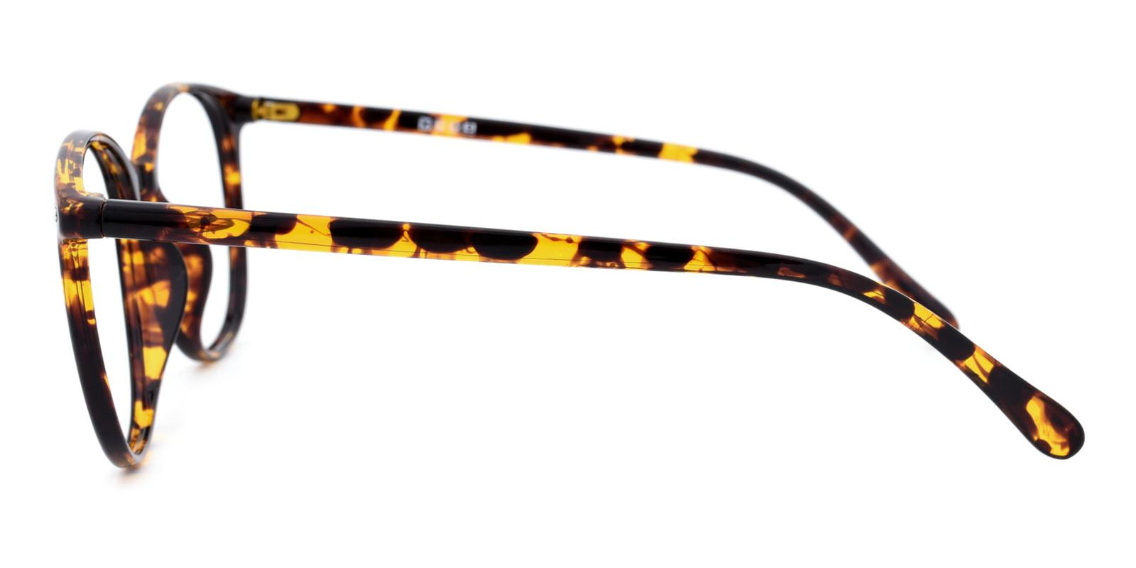 Julian-Tortoise-Round / Square-TR-Eyeglasses-detail