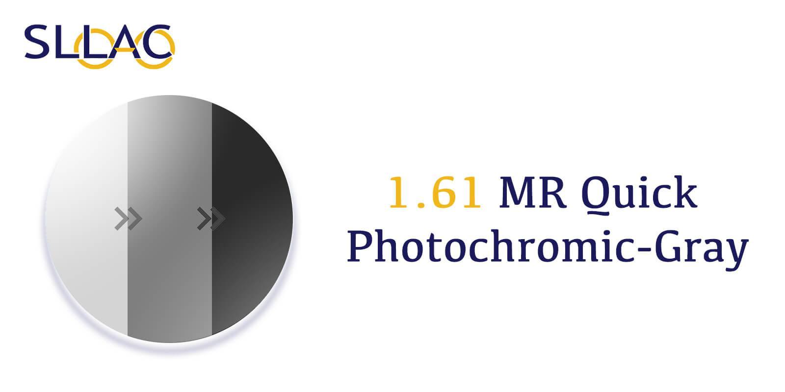 1.61 MR Quick Photochromic - Gray-Translucent---Eyeglasses-detail